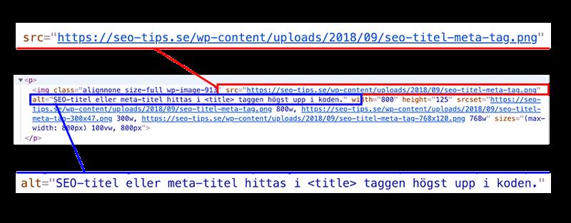 Bildfilens namn och alt-text visat i html koden